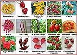Chili Sortiment 15 sehr scharfe Sorten für Hobbygärtner, die scharfe Küche lieben. Samen Saatgut