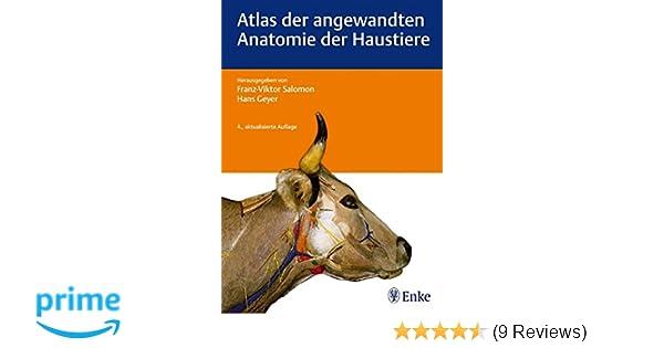 Atlas der angewandten Anatomie der Haustiere: Amazon.de: Hans Geyer ...