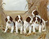 Belles Pups Von Manning, Ruane Kunstdruck auf Leinwand - groß (163 x 132 cms )