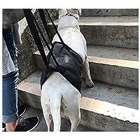 Cinturón auxiliar para perros, varios tamaños de negro Cinturón auxiliar para caminar Edad avanzada Perro deshabilitado Perro Cinturón de protección para las piernas traseras Cinturón de protección pa