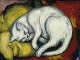 Artland Qualitätsbilder I Bild auf Leinwand Leinwandbilder Wandbilder 60 x 45 cm Tiere Haustiere Katze Malerei Weiß C1LK Die Weisse Katze