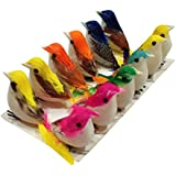 AsianHobbyCrafts Artificial Mini Birds Pack of 12 for Model Making, Party Decorations, Carnivals, Celebrations, School projects, etc