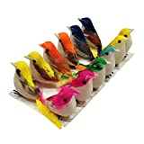 #3: AsianHobbyCrafts Artificial Mini Birds Pack of 12 for Model Making, Party Decorations, Carnivals, Celebrations, School projects, etc
