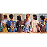 Pink Floyd Poster painted ladies textile Nue offiziell Door Poster (53cm x