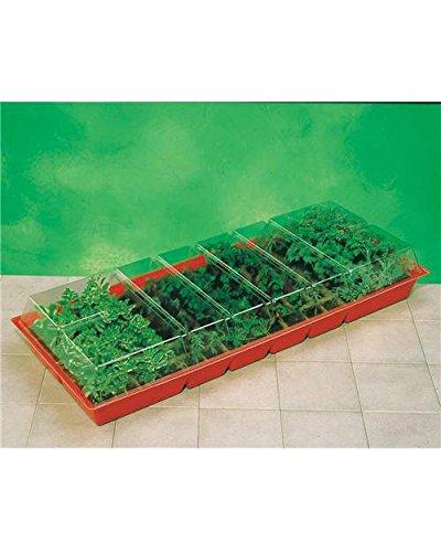 Willemse France 018299 Lot de 2 Mini serres de 48 Pots Multicolore, 12 x 12 x 20 cm