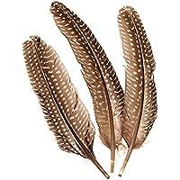 """Auténticas plumas de faisán/plumas """"natural–oscuro"""" (8unidades/15–20cm)"""
