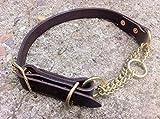 Generic Old School Martingale Halfkaro Hundehalsband mit Messing und Kupfer
