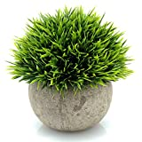 Yogalee Artificial Plant Fake Green Grass with Mini Pot for Home office Decor