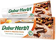 DABUR Herbal Clove Toothpaste, 150 gm + Toothbrush Free