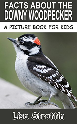 facts-about-the-downy-woodpecker-a-picture-book-for-kids-37-english-edition