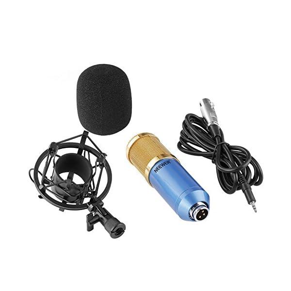 Kit di Microfono