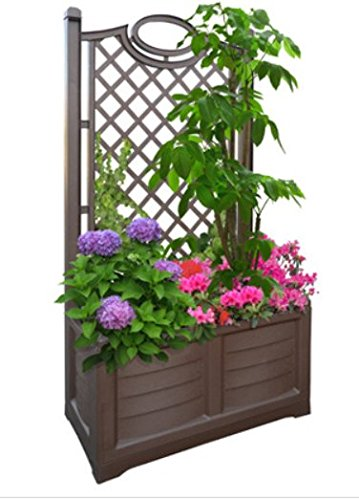 Bama Outdoor fioriera con Espalier, 80x 42.5x 150cm, Cocoa, 80 cm