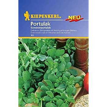 postelein winterportulak claytonia perfoliata salat. Black Bedroom Furniture Sets. Home Design Ideas