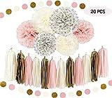Abseed 20 Stück weiß creme pink Tissue Papier Pom Poms Seidenpapier Blumen Quaste Girlande Deko Party Deko-Set für Rustikal Hochzeit Baby Dusche, Geburtstag, Hochzeit Party,Kinderzimmer Dekoration (20pcs)