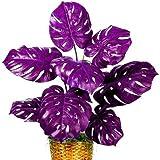 Bloom Green Co. 50 PC mischten Palme Schildkröte Blätter Bonsai, Monstera Topfpflanzen Bonsai, Monstera Ceriman, Mixed Perennial Rare Garten-Blumen: 2