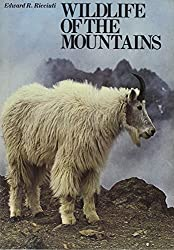 Wild Life of the Mountains