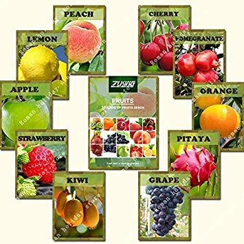 ZLKING 550 Pcs Mix de fruits Bonsai Graines 2017 fruits bio populaires et melon d'eau Plante vivace Graines jardin Plantation