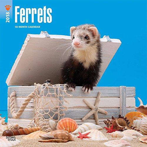 Ferrets 2018 Wall Calendar par BrownTrout Publishers
