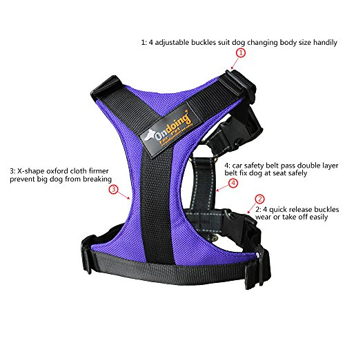 Ondoing-Dog-No-Pull-Harness-Pet-Adjustable-Vest-Harness-Padded-Easy-Walking-Training-Purple-L
