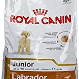 #10: 12 KG Royal Canin Labrador Junior by Best Buy Sure