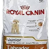 #7: 12 KG Royal Canin Labrador Junior by Best Buy Sure