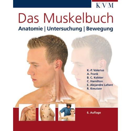 PDF] Das Muskelbuch: Anatomie | Untersuchung | Bewegung KOSTENLOS ...