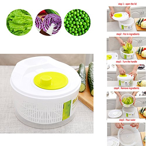 Lin XH Secador frutas verduras secado rápido, sin