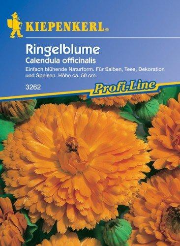 Arznei-Ringelblumen