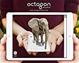 #4: Alive Presents Octagon Studio 4D+ App Based Virtual Reality Flash Cards For Kids (Interactive & Educational) (ANIMAL 4D+) + Free Food Flash Cards