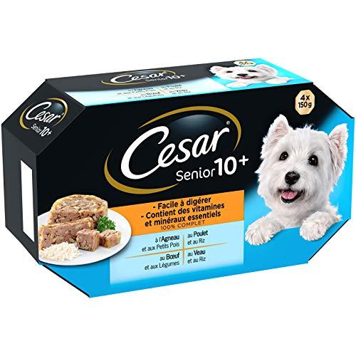CESAR Barquettes en gelée pour chien senior aux 4 saveurs, 24 barquettes de 150g