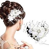 Braut Haarschmuck Hochzeit - ARPDJK 12.5cm x 6cm Vintage Strass Haarkamm für Braut und Brautjungfer, Tüll Blumen Perlen Brautschmuck Haare für Hochzeit, Silber