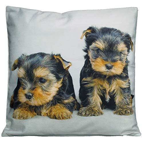 Kissenhüllen 40x40 cm Dekokissen Kissenbezug Fotokissen Kissen Hüllen Bezug Bezüge Hunde Dog (Yorkshire Welpen #4227)