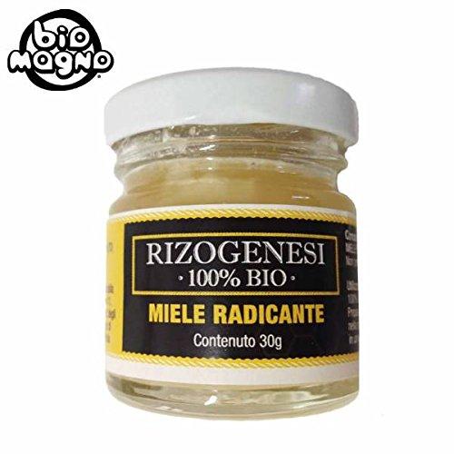 biomagno-rizogenesi-100-bio-miele-radicante-30gr