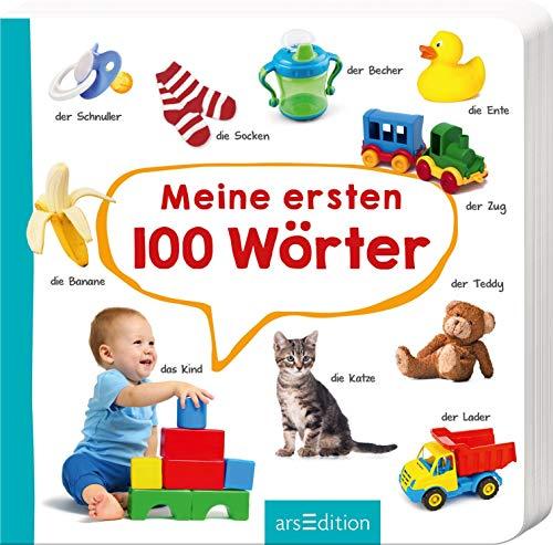 Meine ersten 100 Wörter: Foto-Wörterbuch (Mein Wort Buch)