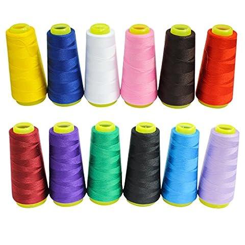 12 Bobines Coniques de Fil en Polyester pour Machine à Coudre et Surjeteuse - Assortiment de Bobines de Fil Colorées pour Machine à Coudre Mesurant 16460 Mètres au Total - Idéal pour la Couture, le Quilting et la Broderie