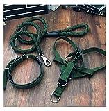 THOR-YAN Hundeleine Hundekette Hundeleine Large Medium Small Dog Brustgurt Hyänenseil Hundehalsband Dehnbarer Hund -Hundeleinen (Farbe : Green, größe : 20kg-39.5kg)