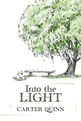 Into the Light (Avery) (Volume 2) by Carter Quinn (2015-05-15)