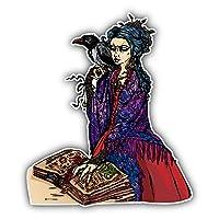 SkyBug Woman Witch Bumper Sticker Vinyl Art Decal for Car Truck Van Window Bike Laptop