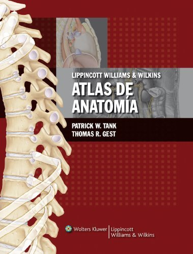LWW Atlas de Anatomia (Spanish Edition) by Patrick W. Tank (2009-01-08)