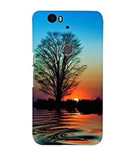 Vizagbeats Sunset Back Case Cover for Huawei Google Nexus 6P