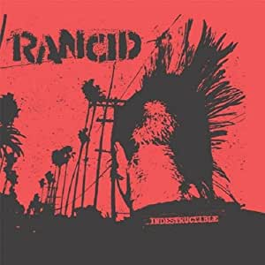 Indestructible [Vinyl LP]