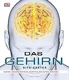 Gehirn-bücher - Best Reviews Guide