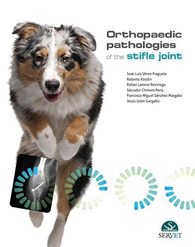 Orthopaedic pathologies of the stifle joint - Veterinary books - Editorial Servet