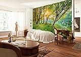Komar - Fototapete SPRING LAKE - 368 x 254 cm - Tapete, Wand, Dekoration, Wandbelag, Wandbild, Wanddeko, Landschaft, Blüten, Blätter, Seeufer - 8-524