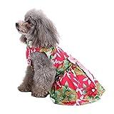 Lomsarsh Sommer-niedlicher Haustier-Kleiderhund und Katzen-Kostüme schöne Haustier-Kleidung