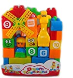 #9: Learning Blocks for Kids with Cartoon Figures, Bag Packing, Best Gift Toy, Multicolor (Set of 40 Pcs)