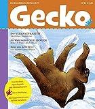 Gecko 24: Die Bilderbuch-Zeitschrift