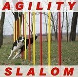 AGILITY-ÜBUNGS-SLALOM-SET ROT