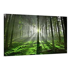 Visario leinwandbilder 5130 bild auf leinwand - Leinwand amazon ...