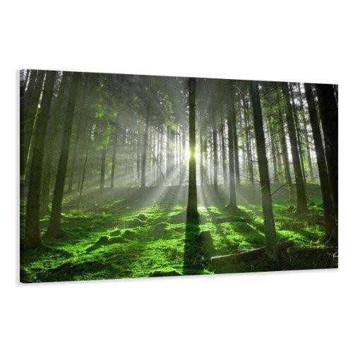 bestpricepictures 120 x 80 cm Bild auf Leinwand Bäume Wald 5130-SCT deutsche Marke und Lager - Die Bilder/das Wandbild/der Kunstdruck ist fertig gerahmt (Bäume Bilder)